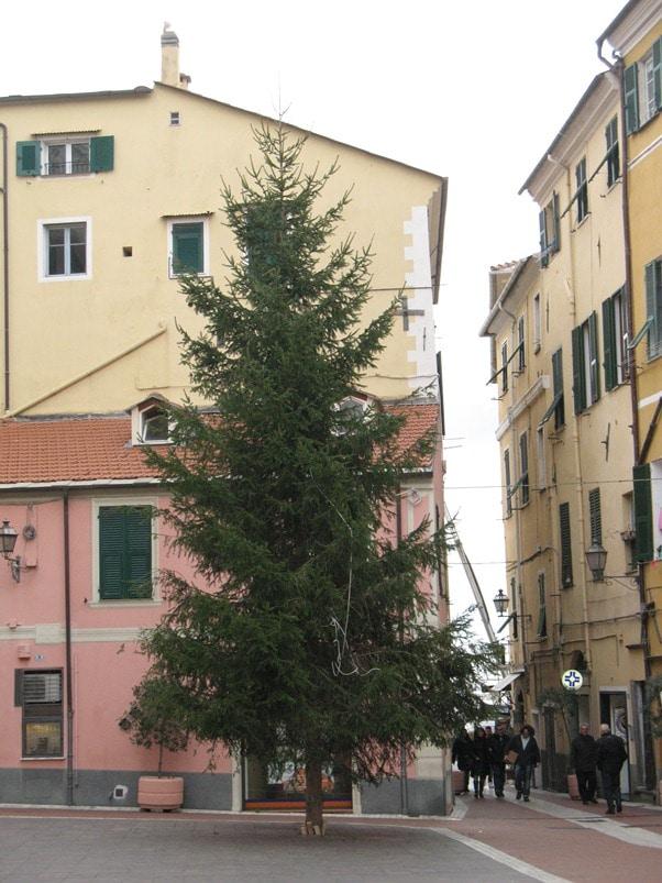 Allestite in queste giorni le prime decorazioni cittadine in preparazione del Natale