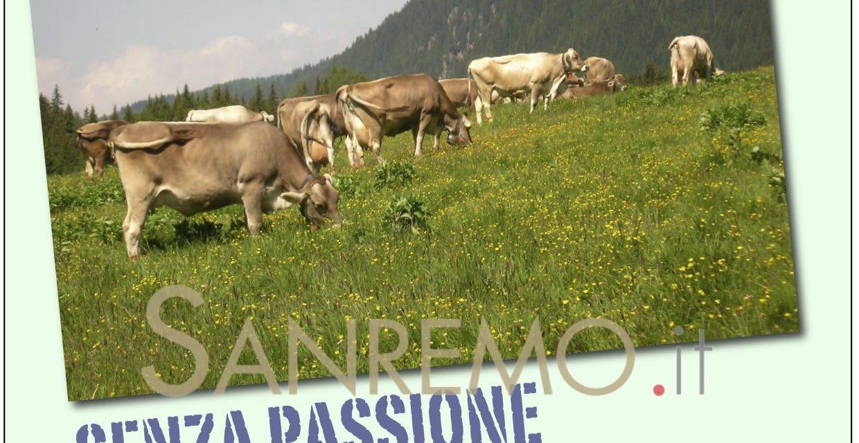 Agricoltura e fotografia…che passione!