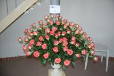 San Biagio, oltre 50 aziende per le Rose in esposizione