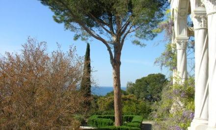 Ventimiglia: agli Hanbury libri e musica sotto le stelle con Giuseppe Conte