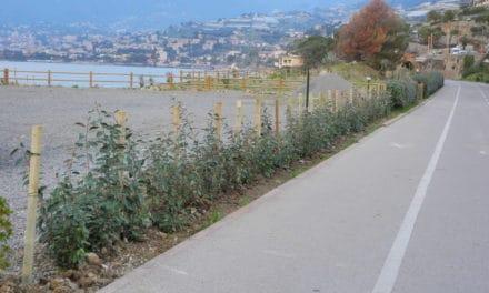 """Nuovi interventi di """"Area 24"""" sulla ciclo/pedonale del ponente ligure"""