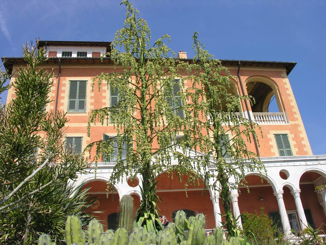 Domenica 2 giugno alle ore 10 e 30, nella Sala dei Camini del Palazzo dei Giardini Botanici Hanbury di Ventimiglia, si terrà la premiazione dei vincitori della quinta edizione del…