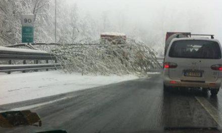 Limone Piemonte: nevica in abbondanza, ottime previsioni per la stagione invernale