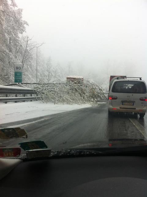 """A Limone sta nevicando da molte ore e si prepara una stagione davvero """"con i fiocchi"""" in prossimità delle vacanze di Natale."""
