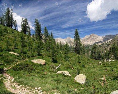 Le Premier Ministre et la Ministre de l'Ecologie, du Développement durable et de l'Energie ont approuvé la Charte du Parc national du Mercantour. Les 28 communes du territoire du parc…