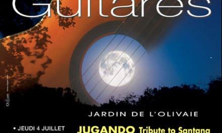 Les Nuits Guitares 2013