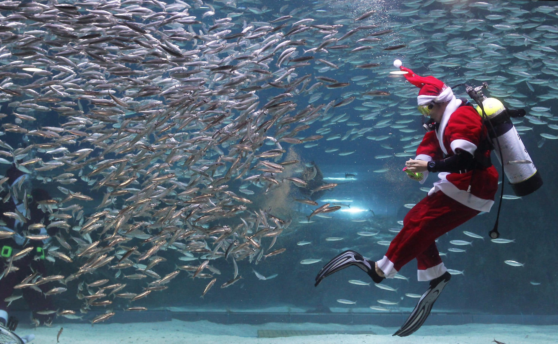 Giovedì 24 dicembre in Calata Cuneo il tradizionale appuntamento