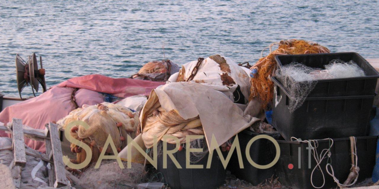 Olioliva: anche il pesce protagonista sulla banchina di Calata Cuneo