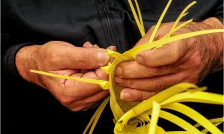 Da lunedì 5 marzo un corso per parmuleri: l'arte di intrecciare le palme
