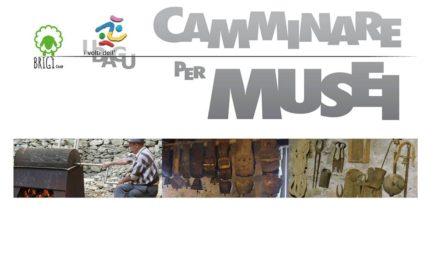 Camminare per Musei alla scoperta dell'Ubagu