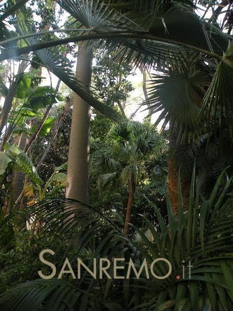 Aperto al pubblico il giardino di Villa Angerer