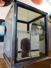 Superati i 300.000 visitatori al Museo Oceanografico di Monaco