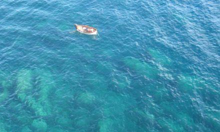 Giornata Mondiale degli Oceani anche in Liguria con InforMare