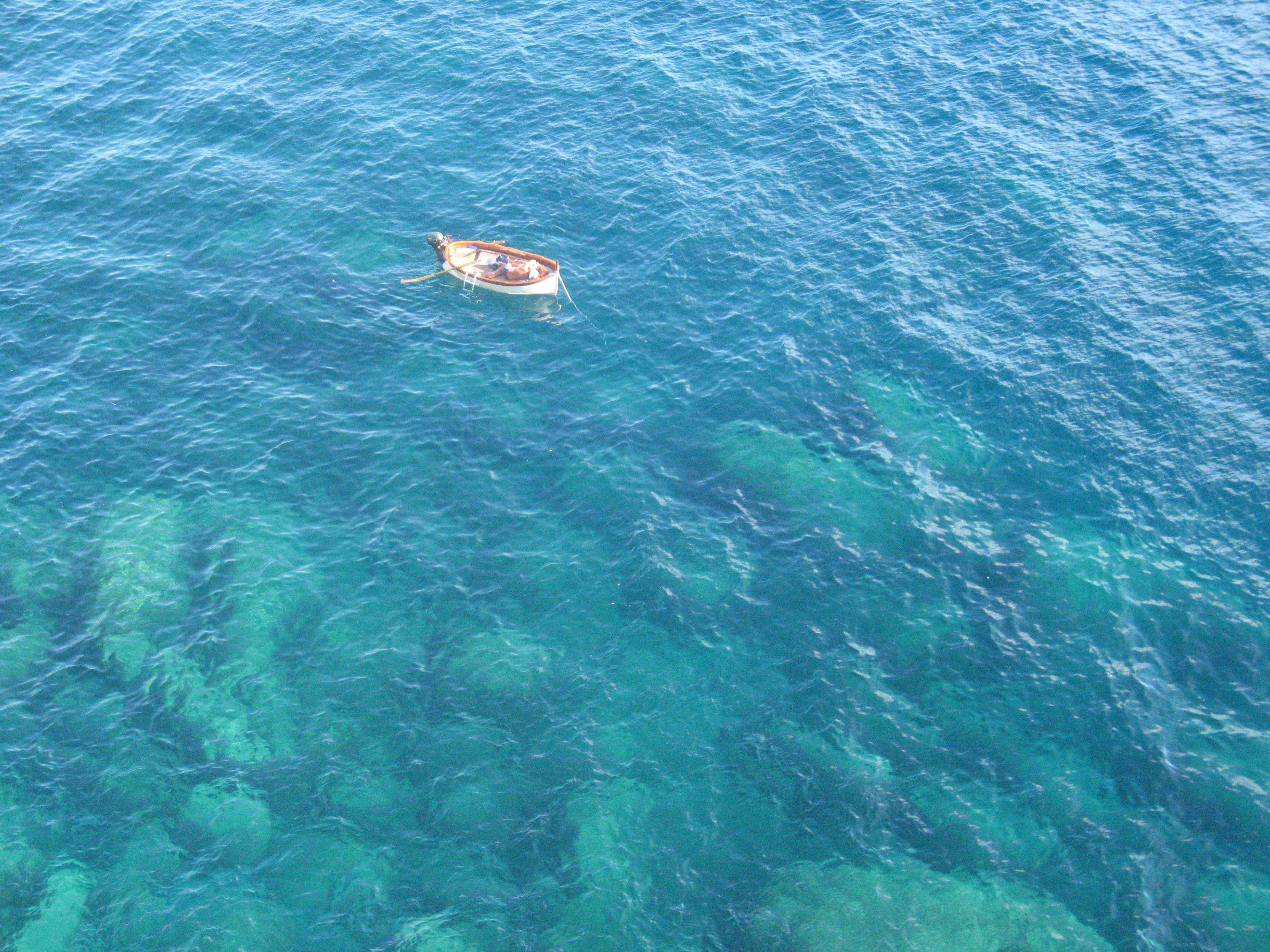 Un'occasione didattica per ricordare la centralità degli ecosistemi marini, l'8 giugno a Diano Marina