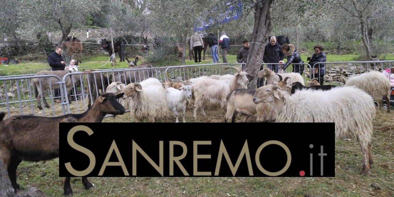Fiera della Candelora: via il 2 febbraio a San Bartolomeo