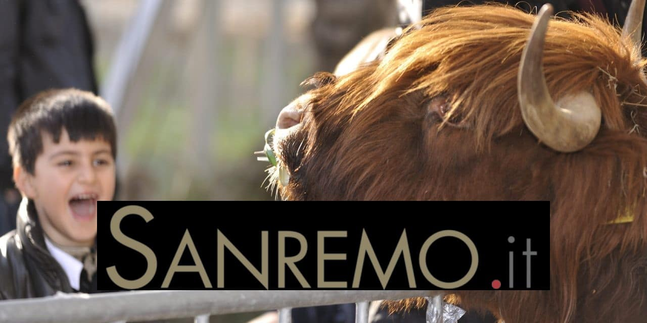 Fiera della Candelora: la tradizione rivive dal 2 al 4 febbraio a San Bartolomeo