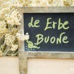 A Borgo Rollo torna la Festa delle erbe aromatiche, officinali e delle piante antiche