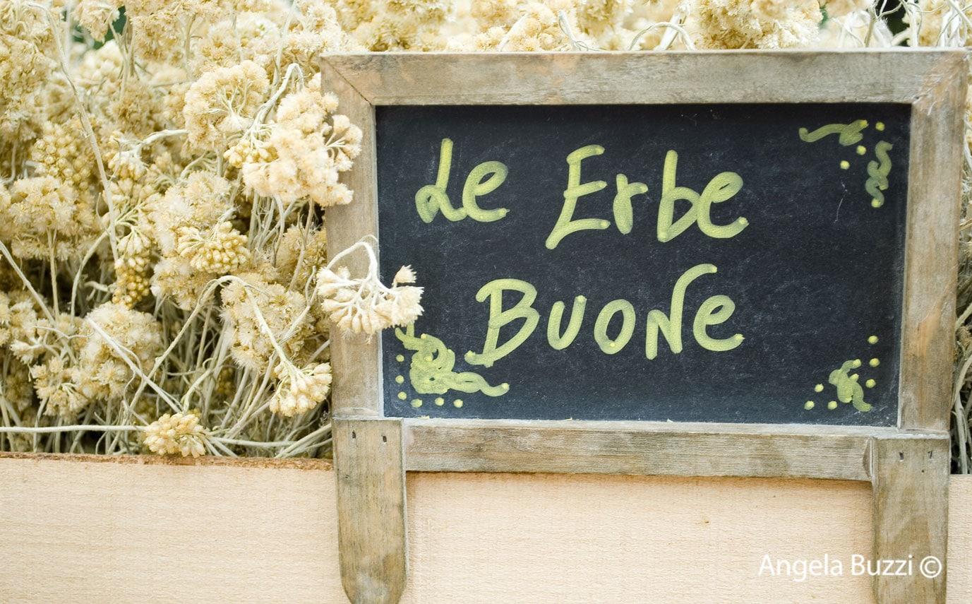 Torna la festa dedicata alle erbe e ai profumi del Ponente Ligure nel borgo di Rollo