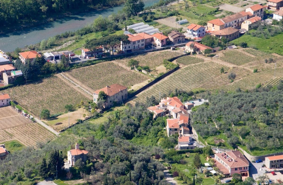 Il Pigato, per la Liguria occidentale, è oggi simbolo di tipicità. Si tratta infatti della più rinomata espressione vitivinicola locale, prodotta in una quantità sufficiente a creare mercato. Il cammino…