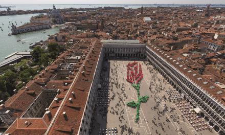 La storia del Bocolo di San Marco