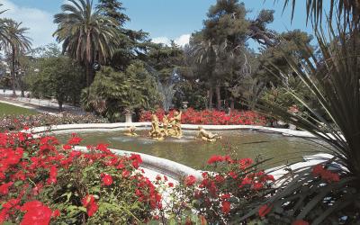 I Giardini di Sanremo: dove si incontrano i Cinque continenti